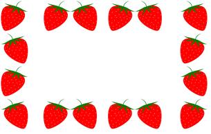 イチゴのフレームの素材 [FYI00308062]