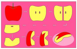 うさぎ型林檎の作り方(ピンク)の写真素材 [FYI00308066]