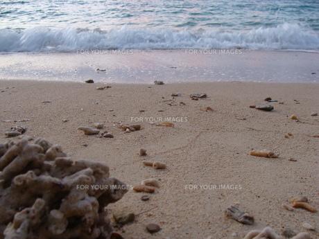 夕方の波打ち際の写真素材 [FYI00308507]