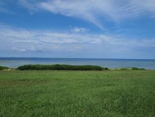 沖縄の自然の素材 [FYI00308600]