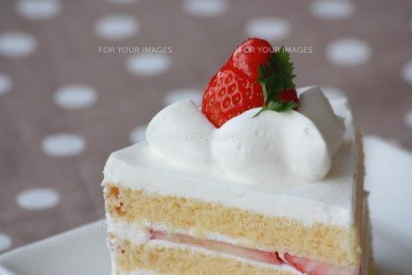 いちごのショートケーキの写真素材 [FYI00308651]