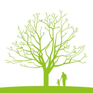小鳥がとまる樹木の素材 [FYI00308676]