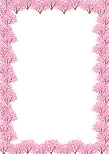 桜並木のフレームの素材 [FYI00308762]