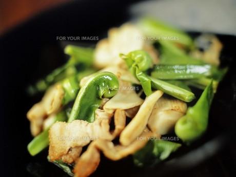 豚肉とシダの炒め物の写真素材 [FYI00308853]