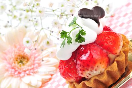 苺のタルトの写真素材 [FYI00309548]