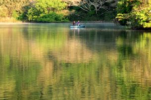 雄蛇ヶ池の写真素材 [FYI00309791]