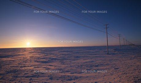 北極海の写真素材 [FYI00309972]