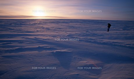北極海の写真素材 [FYI00309981]