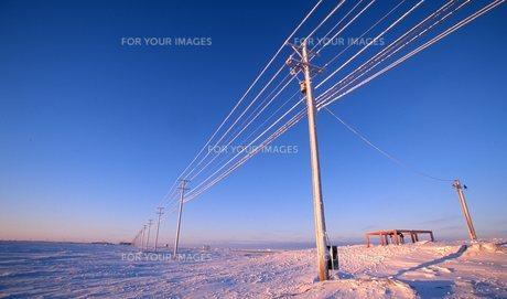 北極海の写真素材 [FYI00309994]