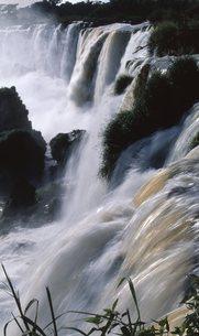 イグアスの滝の写真素材 [FYI00310124]