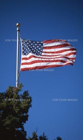 星条旗の写真素材 [FYI00310170]