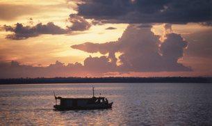 ピラニア釣りの写真素材 [FYI00310172]
