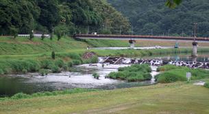 河川の写真素材 [FYI00310929]