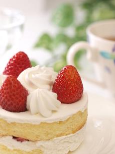 苺ケーキ(縦)の写真素材 [FYI00311218]