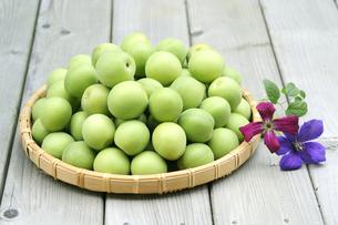 我が家の梅の実とクレマチスの素材 [FYI00311516]