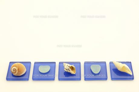 地元の海で拾った貝で置物を作ってみましたの素材 [FYI00311605]