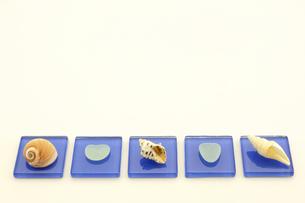 地元の海で拾った貝で置物を作ってみましたの写真素材 [FYI00311605]