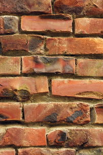 焼きレンガの壁の写真素材 [FYI00311648]