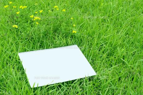 スケッチブックと原っぱの黄色い花の写真素材 [FYI00311653]