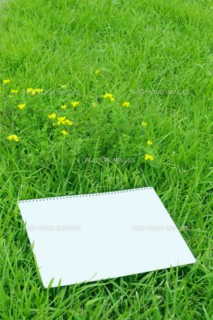 スケッチブックと原っぱの黄色い花の写真素材 [FYI00311658]