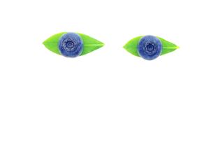 ブルーベリー実と青葉  目の形の素材 [FYI00311718]