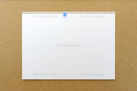 コルクボードに貼られた画用紙の写真素材 [FYI00311878]