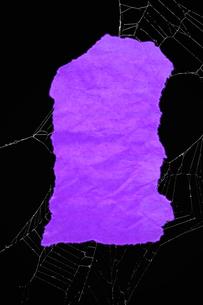 ハロウィン色紙 クモの糸の写真素材 [FYI00312042]