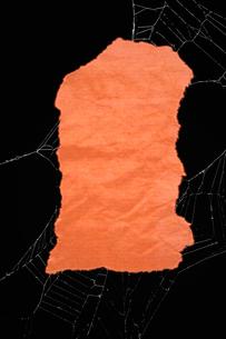 ハロウィン色紙 クモの糸の写真素材 [FYI00312064]
