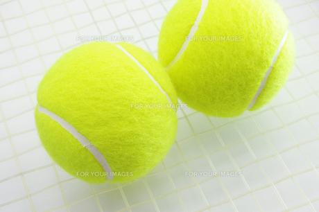テニスボール 2個の写真素材 [FYI00312086]