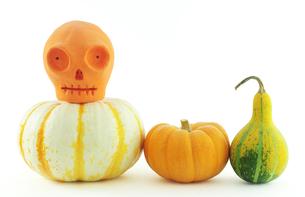 骸骨とカボチャ ハロウィンの写真素材 [FYI00312161]