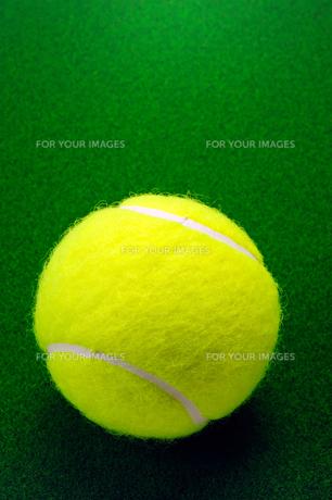 テニスボールの写真素材 [FYI00312202]