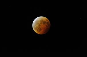 2014 10 8 皆既月食の写真素材 [FYI00312342]