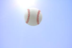 野球ボール 硬式の写真素材 [FYI00312343]