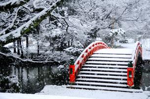 雪の風情の写真素材 [FYI00312417]