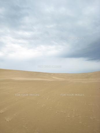 砂漠と曇り空の写真素材 [FYI00312510]