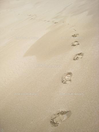 砂漠と足跡の写真素材 [FYI00312533]