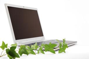 コンピューターと植物の写真素材 [FYI00312668]