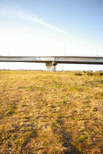 鉄橋と草原の素材 [FYI00313016]