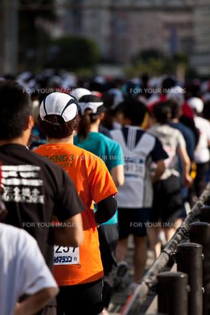 市民マラソンの素材 [FYI00313099]