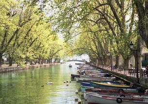 フランス 人気避暑地 アヌシーの湖畔の風景1の写真素材 [FYI00313148]