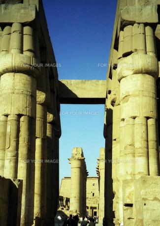エジプト ルクソールのアモンホテプ3世神殿の柱頭 の写真素材 [FYI00313150]