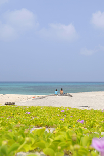 白い砂浜に座るカップルの素材 [FYI00313182]