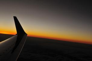 夜の翼の素材 [FYI00313198]