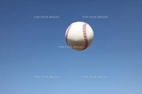 硬球と青空の写真素材 [FYI00313285]