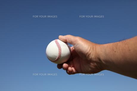 硬球と男性の手の写真素材 [FYI00313287]