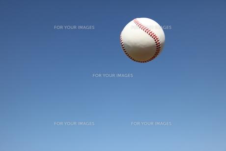 硬球と青空の写真素材 [FYI00313289]