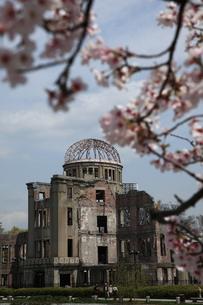 原爆ドームと桜の写真素材 [FYI00313292]