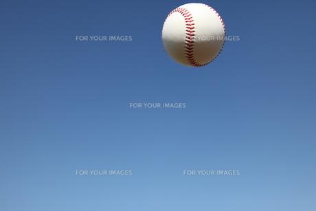 硬球と青空の写真素材 [FYI00313294]