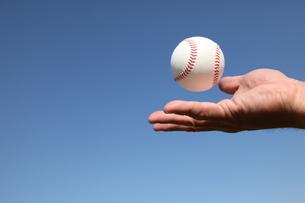 硬球と男性の手の写真素材 [FYI00313295]