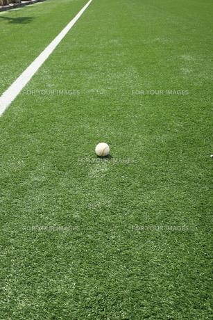 人工芝と硬球の写真素材 [FYI00313298]